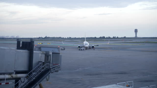 white airplane sit parked at terminal of airport white airplane sit parked at terminal of airport arthropod stock videos & royalty-free footage