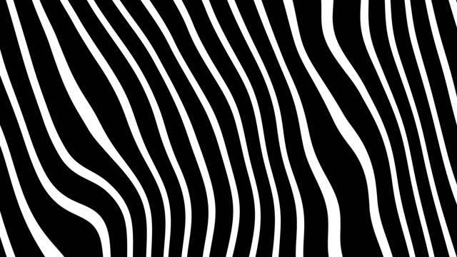 vídeos de stock e filmes b-roll de white and black lines - listrado