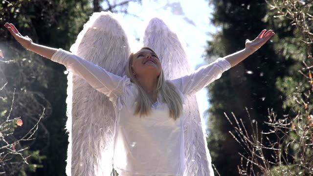 bianco angelo nascita - angelo video stock e b–roll