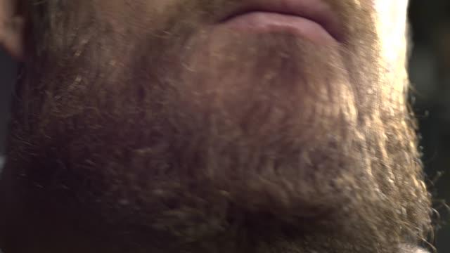 branco barbudo homem hipster penteando sua barba com um pente - vídeo