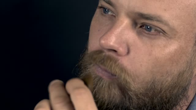 white bearded hipster man combing his beard with a comb video
