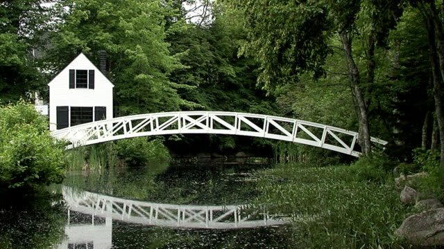 White Bridge over Pond video