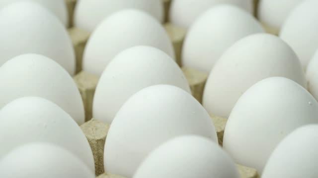 stockvideo's en b-roll-footage met witte kippeneieren. - ei