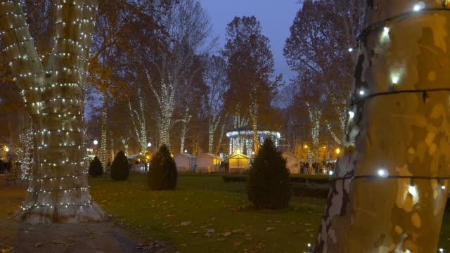 stockvideo's en b-roll-footage met close-up: witte kerstverlichting verandert een park in een prachtig winter wonderland. - christmas cabin