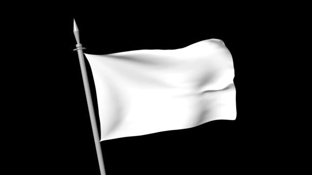 bianco bandiera - molla video stock e b–roll