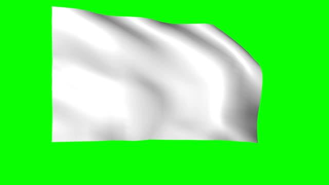 vídeos de stock, filmes e b-roll de bandeira branca balançando na tela verde - flag