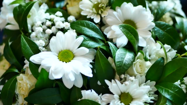 white flowers and green leaves in bridal bouquet at wedding - bouquet video stock e b–roll
