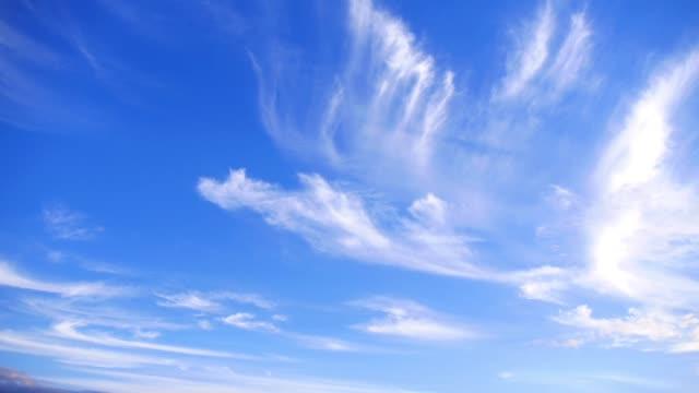 weiße flauschige cirrostratus (blatt) wolken fliegen in klaren, blauen himmel - zirrus stock-videos und b-roll-filmmaterial