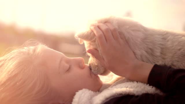 春日キス ハグふれあい夏の屋外公園の芝生の上に敷設所有者女の子と寄り添う白いゴールデン ・ リトリーバーの子犬 ビデオ