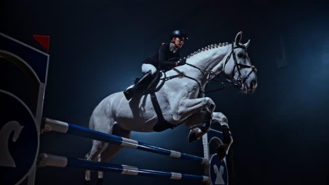 vídeos y material grabado en eventos de stock de slo mo caballo blanco saltando sobre un riel con su jinete - valla artículos deportivos