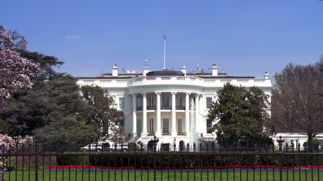 stockvideo's en b-roll-footage met witte huis zuid-gazon washington, dc in 4k/uhd - white house