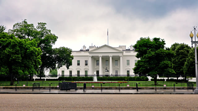 stockvideo's en b-roll-footage met het witte huis. washington dc - white house