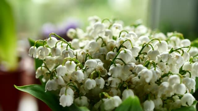 white lily of the valley bouquet - lilia filmów i materiałów b-roll