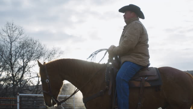 white middle-aged cowboy sits on his horse - rancher video stock e b–roll