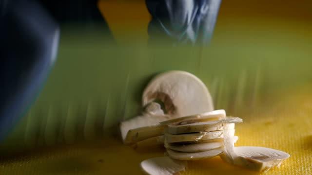 vídeos de stock e filmes b-roll de cogumelo branco completo e cortado com uma faca na mesa de plástico - swiss army knife