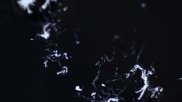 White Particles And Ink Moving On Black Background video