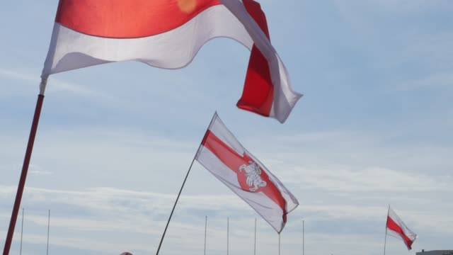 White red white Belarus flag. White red white Belarus flag. belarus stock videos & royalty-free footage