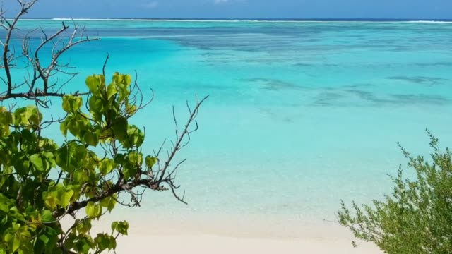 white sand bank and turquoise ocean from above - isole mauritius video stock e b–roll