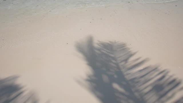белый песок с кокосовой тень и морской волны - тени стоковые видео и кадры b-roll