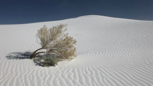 White Sands video