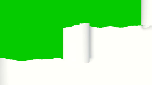 white sheet of paper ripping into horizontal stripes that rolled up opening the screen. beautiful 3d animation of abstract paper breaking on green screen. alpha mask. - pezze di stoffa video stock e b–roll