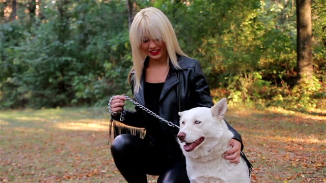 white siberian husky with his owner posing for photographing - cane addestrato video stock e b–roll