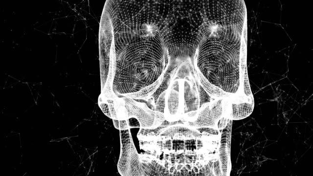 beyaz kafatası siyah arka plan 4k video 3d animasyon. - biyomedikal animasyonu stok videoları ve detay görüntü çekimi