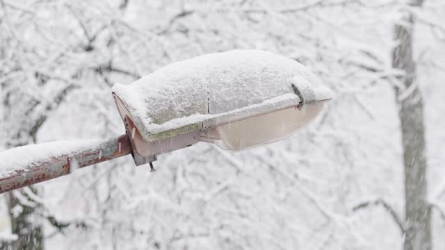 beyaz kar sokak lambası kapsar. i̇lk kar kışın yağıyor. - ön plan net arka plan flu stok videoları ve detay görüntü çekimi