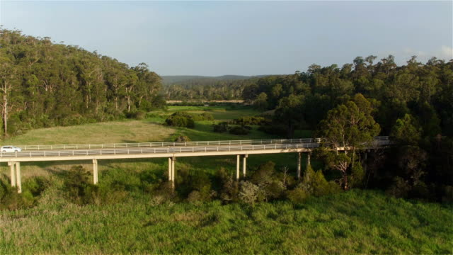AERIAL: White SUV car driving across the bridge over green Australian swamp video