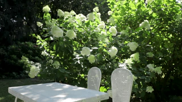 White table in big garden