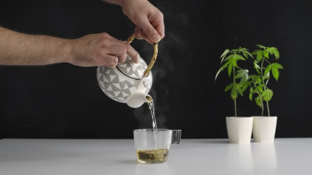 White table with Marijuana plant in pottery. Hand pouring hot CBD tea in to glass. White table with Marijuana plant in pottery. Hand pouring hot CBD tea from teapot in to glass. Black backdrop. marijuana herbal cannabis stock videos & royalty-free footage