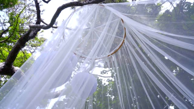 White veil decorations. Delicate transparent decoration. Transparent fabric White veil decorations. Delicate transparent decoration. White transparent fabric. Closeup of beautiful wedding veil. Fashion decorative cloth on background of green trees tulle netting stock videos & royalty-free footage