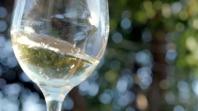 vitt vin virvlar i ett vinglas i slow motion - vitt vin glas bildbanksvideor och videomaterial från bakom kulisserna