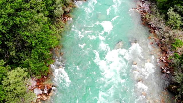 whitewater tara river - источник стоковые видео и кадры b-roll