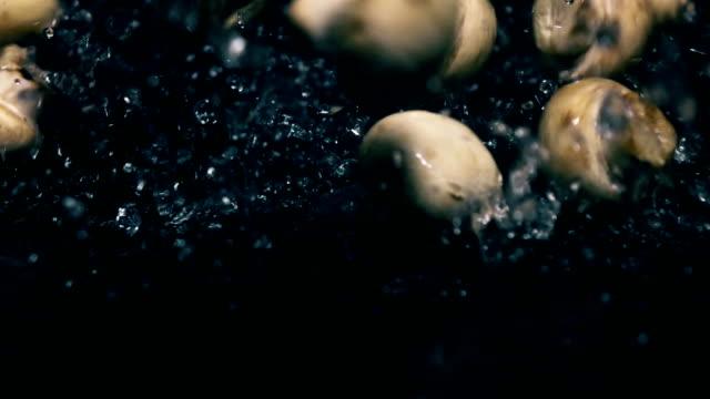 Whole champignon mushrooms splash on dark wet surface. Slow motion video video
