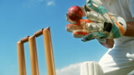 istock SLO MO Wicket keeper removing bails off the stumps after catching the ball 1178551776