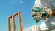 istock SLO MO SPEED RAMP Wicket-keeper stumping the batsman 1178551045
