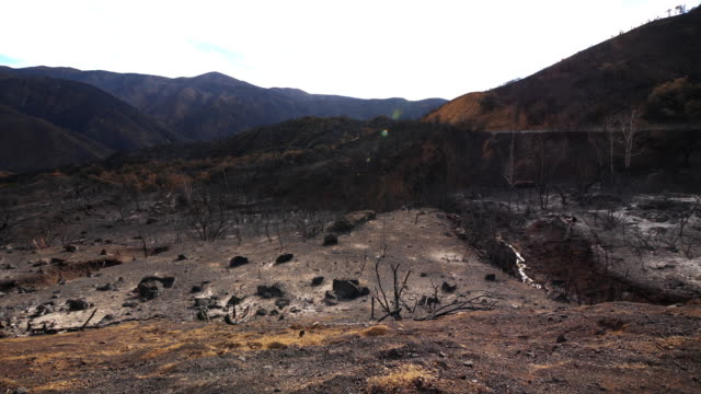wide angle pan shot of burnt valley from wildfire - сила природы стоковые видео и кадры b-roll