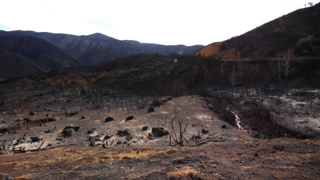 colpo pan grandangolare della valle bruciata da fuoco selvaggio - fenomeno naturale video stock e b–roll