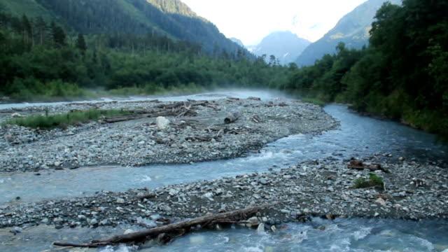 Wide mountain stream, rocks and woody debris in water, wildlife video