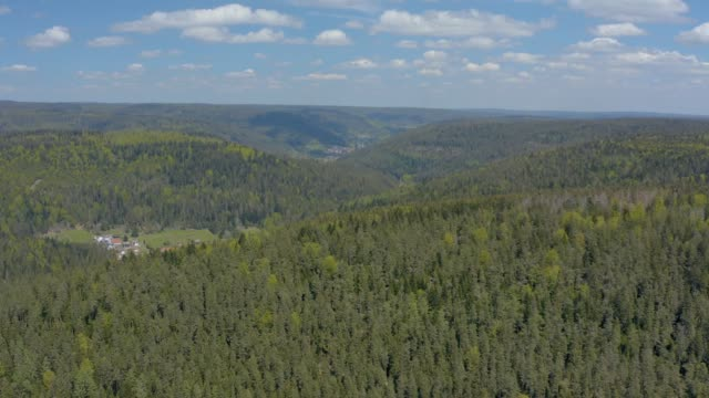 Wide pan to wind turbines in the Black Forest video