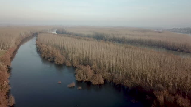 Bидео Wide river Autumn Aerial view.