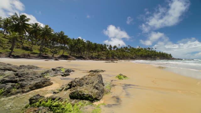 Wide Shot of a Tropical Beach