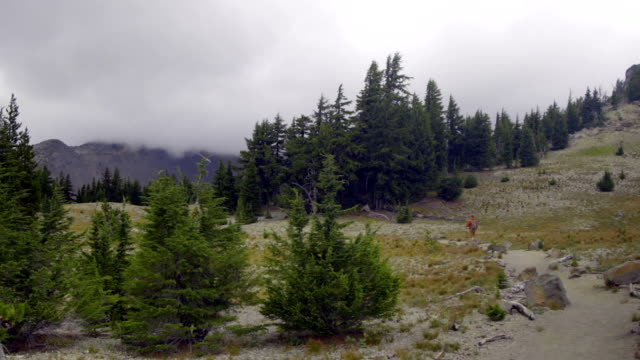 Wide shot of hiker video