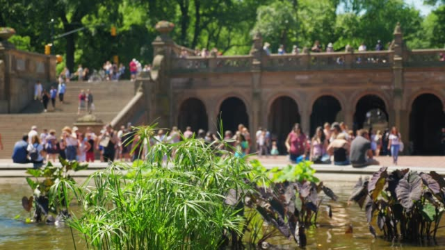 Wide Shot of Tourists Visiting Bethesda Fountain A wide dolly shot of unidentifiable tourists visiting Bethesda Fountain in New York City's iconic Central Park. Shallow depth of field insures anonymity. central park manhattan stock videos & royalty-free footage