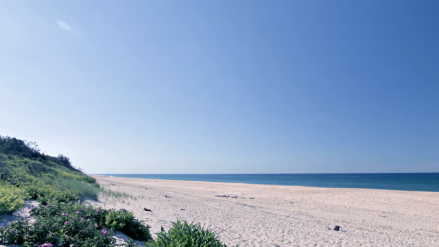 Wide, static beach scene with blue sky, sand, sea water, waves. Perfect scene video