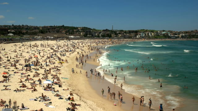 wide view of bondi beach in sydney wide view of the famous bondi beach in sydney, australia sunbathing stock videos & royalty-free footage