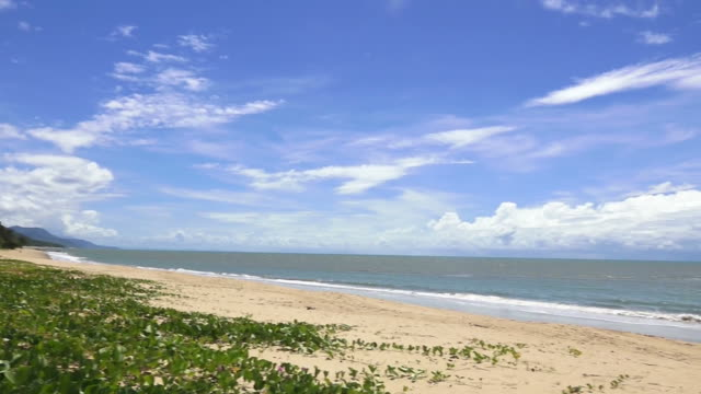 Wild beach in Queensland Australia video