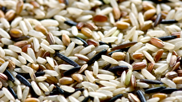 Wild Rice  close up video