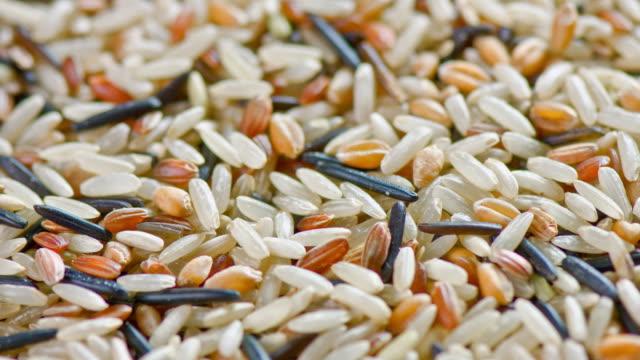 Wild Rice video